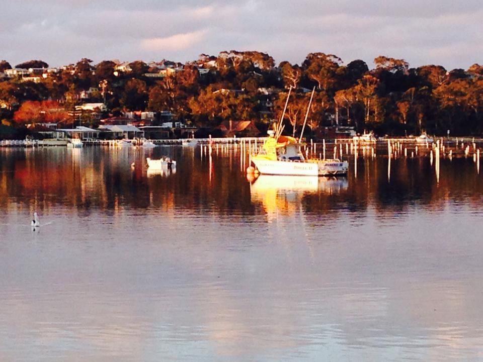 headland-fishing-charters-47